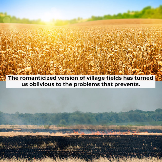 expectations vs reality of village fields